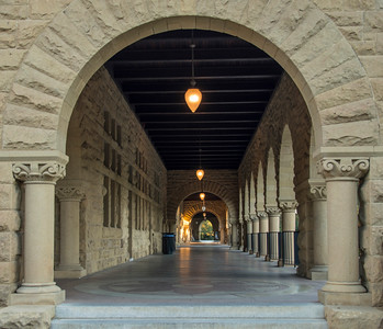 Stanford-31