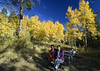Due to the crisp temperature in October, you are guaranted nice campsites and small crowds.