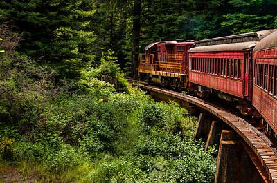 Skunk Train 051514-0137