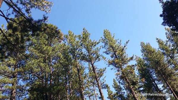 Tahoe Sky