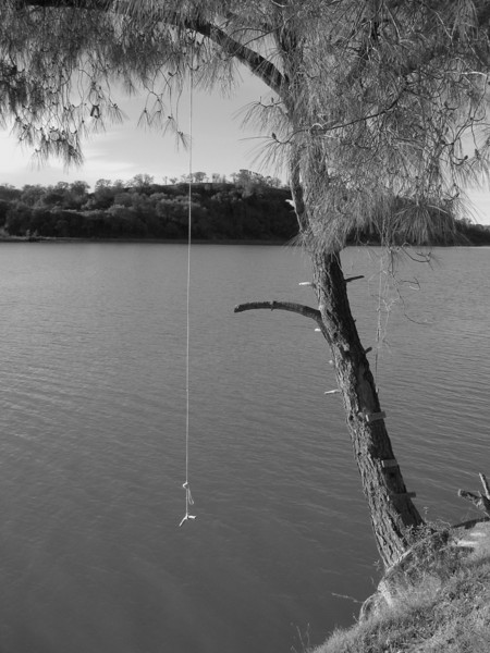 """Rope Swing""<br /> Lake Natoma, Folsom, CA.  <br /> Image Copyright 2006 by DJB.  All Rights Reserved."