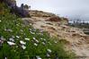 Laguna Beach_20110424  024