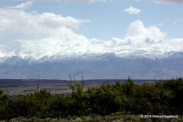 White Moungtain Range - Bishop