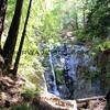 0537_Pfeiffer Falls.JPG
