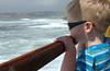 Gray watching ocean