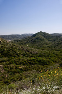 Looking back down Little Sycamore Canyon from the summit.