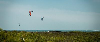Emma Wood Beach/Seaside Wilderness 051013-0350
