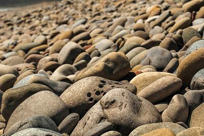 Emma Wood Beach/Seaside Wilderness 051013-0312
