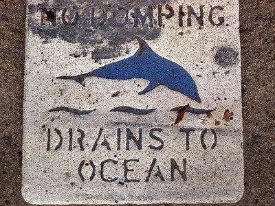 Another thing I love about California  No Dumping, Drains to Ocean with a dolphin pictured
