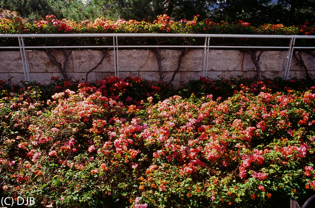 The Getty Center, Los Angeles, CA.