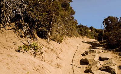 A sandy path leads to the top of the bluff of Point Dume State Preserve  Westward Beach, Malibu, California