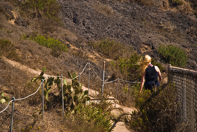 A sandy path of steps leads back to the beach from bluff of Point Dume  Westward Beach, Malibu, California