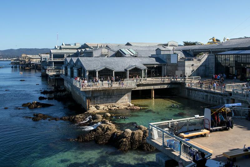 Monterey-6555