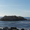 Bird Rock, along 17-Mile Drive, lives up to its name