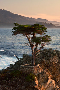 "This is actually beyond Monterey on what is known as ""17 mile drive"""