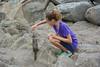 Pacific Grove Wildlife_2014-Aug  065