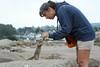 Pacific Grove Wildlife_2014-Aug  043