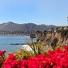 2499_2014-08-17_Avila Beach.JPG