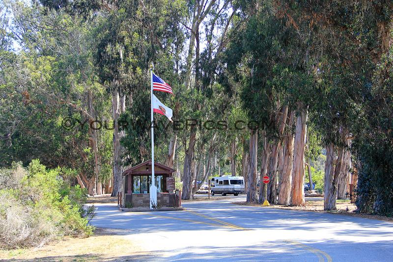 4289B_Morro Bay State Park campground_2015-08-19.JPG
