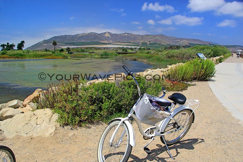 4318_Ventura bike trail_2015-08-20.JPG