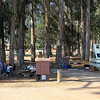 4290_Morro Bay State Park campground_2015-08-19.JPG