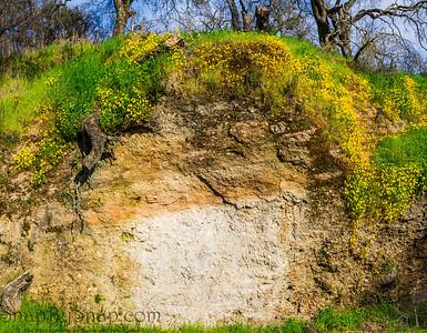 Mud Wall