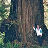 Randal with Redwood Tree - Redwood National and State Parks - N. California Coast  5-27-98