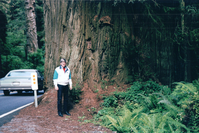 Randal at Redwood Tree - Redwood National and State Parks - N. California Coast  5-27-98