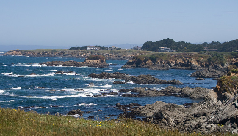 Mendocino Botanical Gardens, Fort Bragg, CA. Image Copyright 2010 by DJB.  All RIghts Reserved.