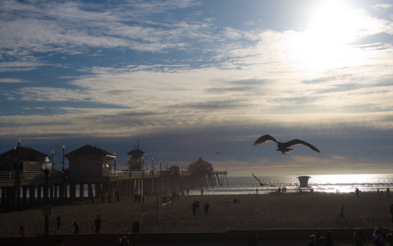 Huntington Beach, CA.  Image Copyright 2009 by DJB.  All Rights Reserved.