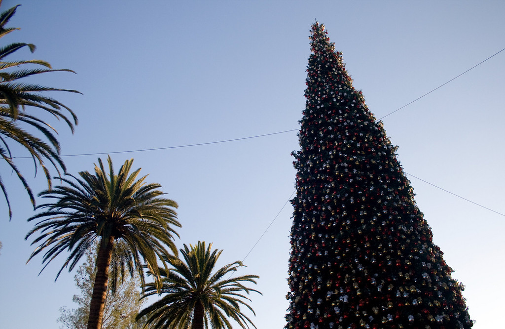 Fashion Island, Newport Beach, CA. <br /> Image Copyright 2010 by DJB.  All Rights Reserved.