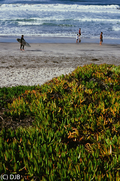 "Del Mar, CA. Shot on Fujichrome Velvia 100 film.  Processing & Scanning by North Coast Photo Services ( <a href=""http://www.NorthCoastPhoto.com"">http://www.NorthCoastPhoto.com</a>).  Image Copyright 2012-2013 by DJB.  All Rights Reserved.   <a href=""http://www.DaveXMasterworks.com"">http://www.DaveXMasterworks.com</a>"