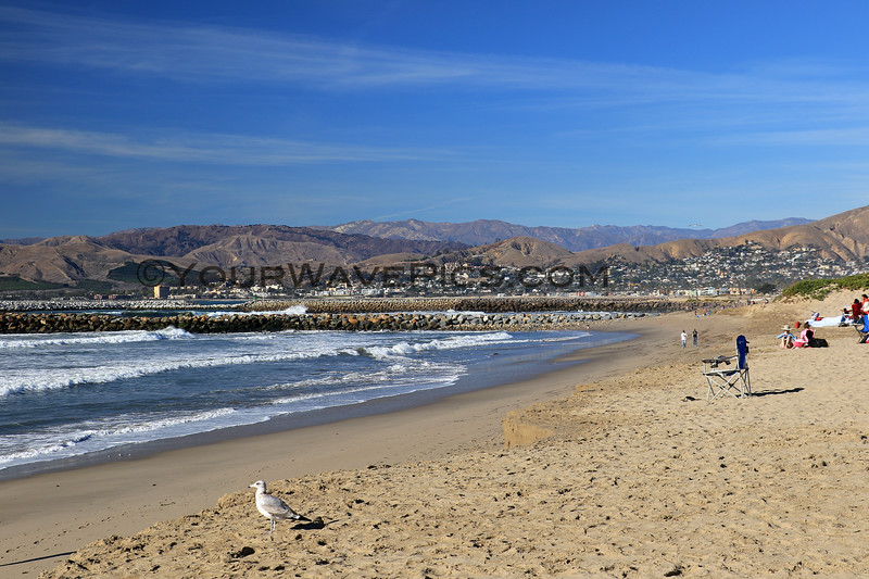 2021-01-14_1_Ventura_Surfer's Knoll.JPG