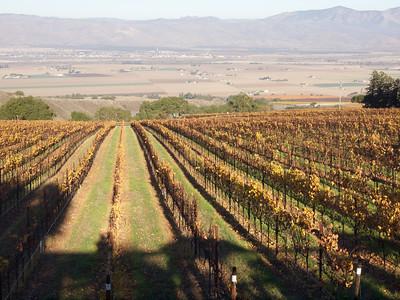 Hahn Winery  Copyright 2011 Neil Stahl