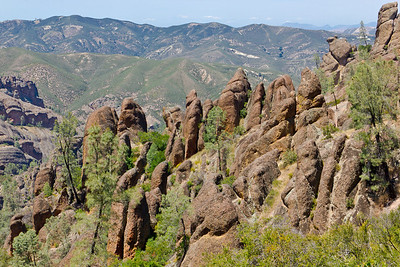 Pinnacles National Monument 5/11