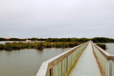 Day 2.2 PM Oso Flaco Lake@Oceano Dunes 121