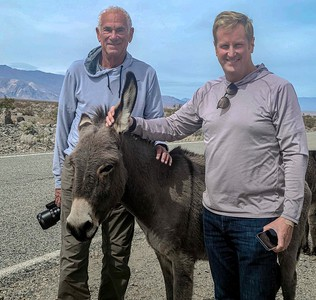 We made friends with wild burros.