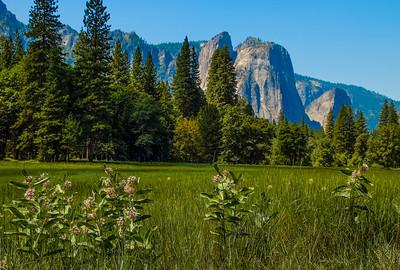Yosemite_Landscapes-4