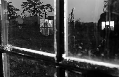 Window Stalkers