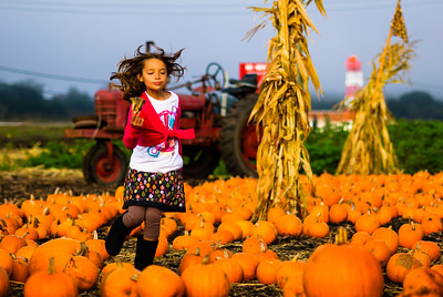Romping thru the Pumpkin Patch