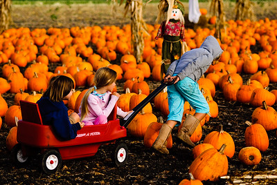 Radio Flyer thru the Pumpkin Patch