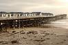 Beach houses in Pacific Beach, CA