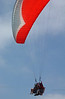 Paragliders at Torrey Pines, CA