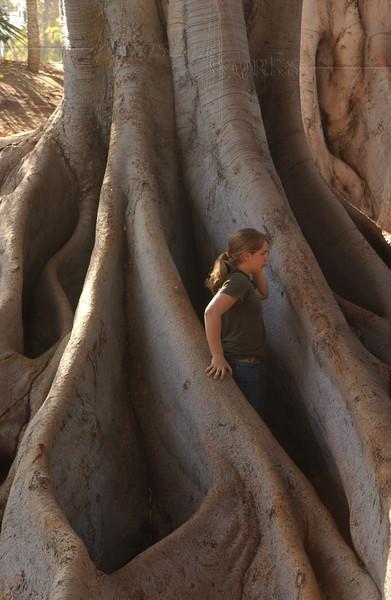 Lydia in giant Moreton Bay fig tree roots - Balboa Park, CA