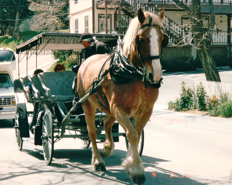 Horse-drawn Carriage - Julian, CA  4-3-96