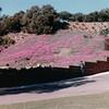 Heritage Park, San Diego, CA - 1/28/86