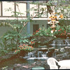 WaterfallScenes Around Hotel - Hanalei Hawaiian Hotel, San Diego, CA  4-1-96
