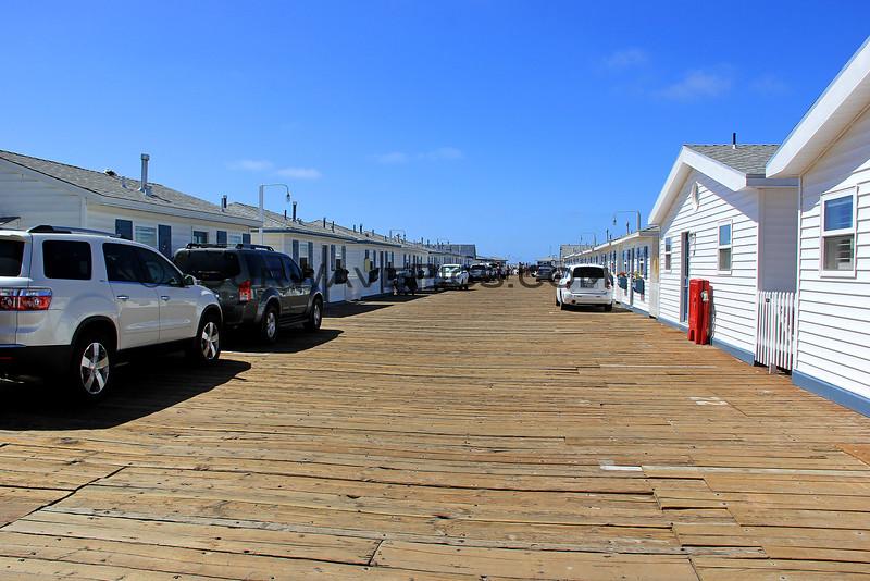 2014-09-26_Crystal Pier_Mission Beach_4280.JPG