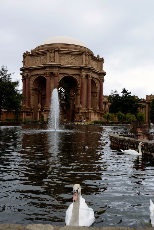 Palace of Fine Arts - San Francisco - California - USA