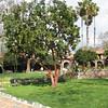 Mission San Juan Capistrano 2-12-07